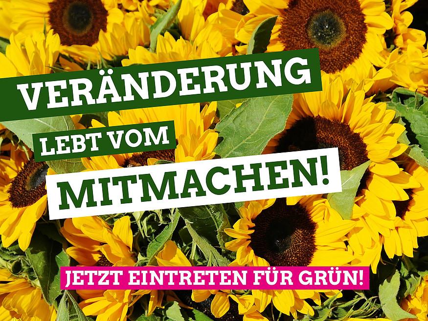 Veränderung lebt vom Mitmachen - Jetzt eintreten für Grün!