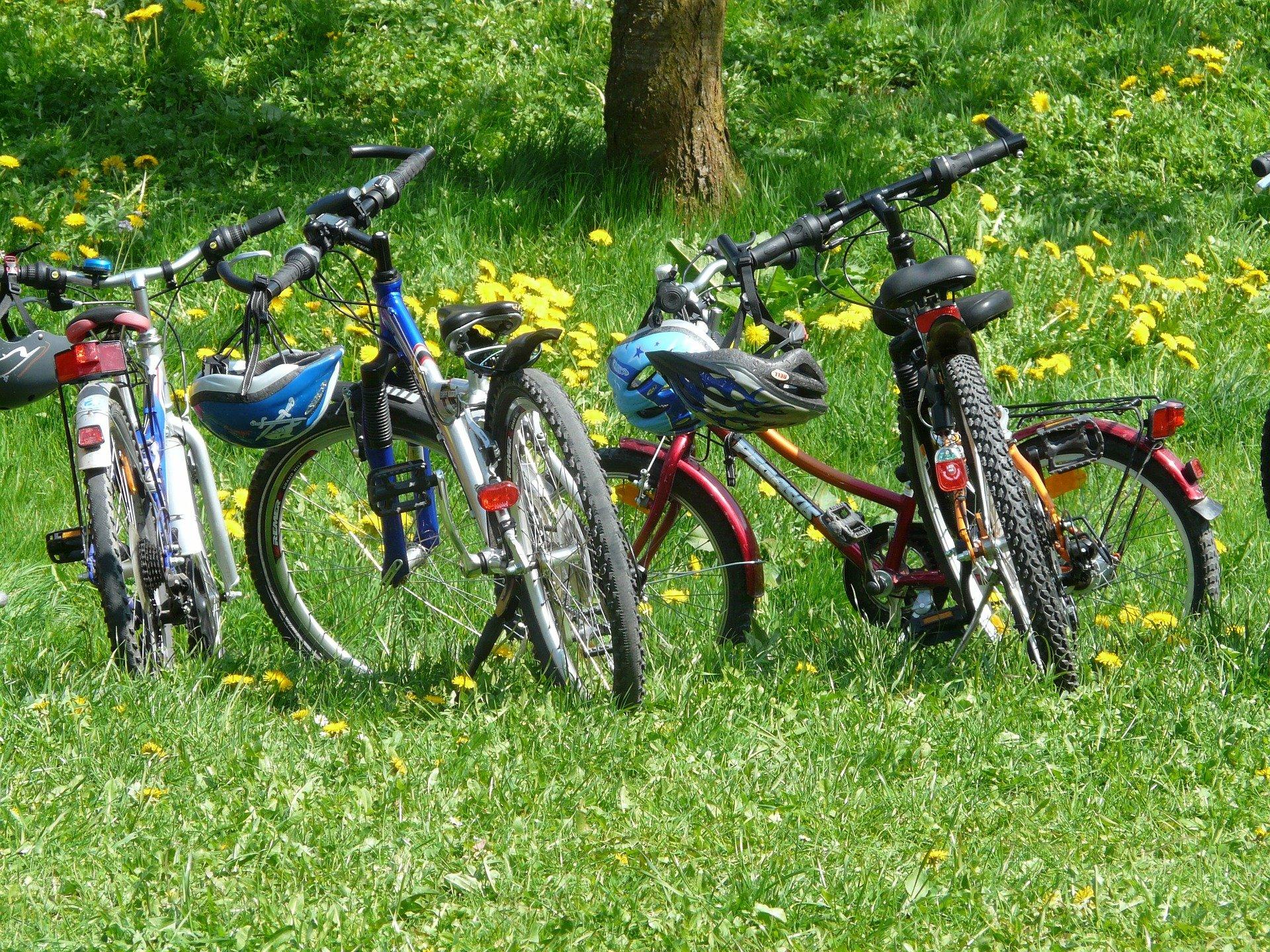 Fahrräder, Fahrrad, Familienausflug, Radtour, Radeln