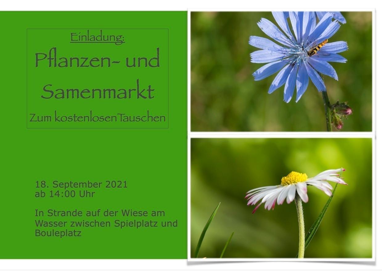 Pflanzen- und Samentauschbörse in Strande am 18. September 2021 ab 14:00h